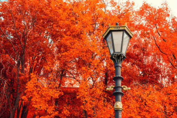 Fall real estate blog ideas